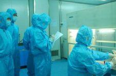 广东规划建设25-30家P3实验室 5年内有望建成P4